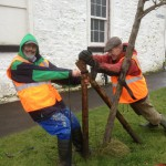 John and James struggle to straighten a tree!
