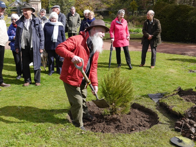 'John Muir' plants a tree